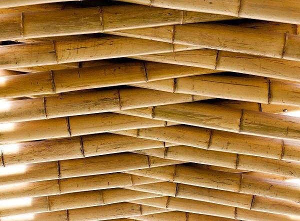 bamboo-ceiling-asian-model-minority